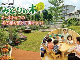 学校法人草土学園 柏みどりこども園