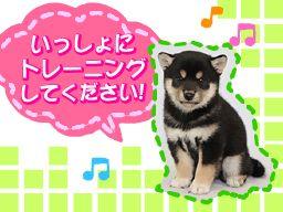 株式会社 愛犬ハウスセキノ
